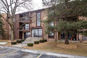 7525 175th St #824 Tinley Park, IL 60477