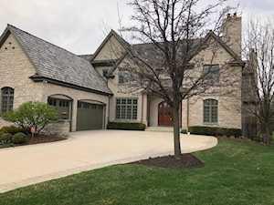 156 Palmer Circle Vernon Hills, IL 60061