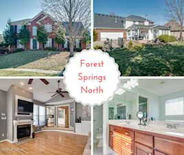 4418 Sycamore Forest Pl Louisville, KY 40245