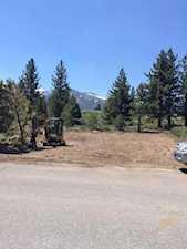 44 Wagon Mammoth Lakes, CA 93546