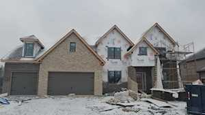 17009 Sheridans Trl Orland Park, IL 60467