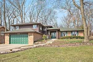 16200 S Pin Oak Ct Homer Glen, IL 60491
