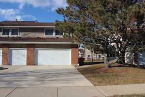 928 Hidden Lake Dr Buffalo Grove, IL 60089