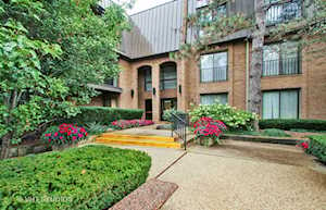 3 The Court of Harborside Dr #205 Northbrook, IL 60062