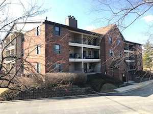 641 Hapsfield Ln #201 Buffalo Grove, IL 60089