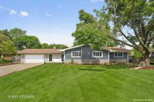 428 N Alfred Ave Elgin, IL 60123