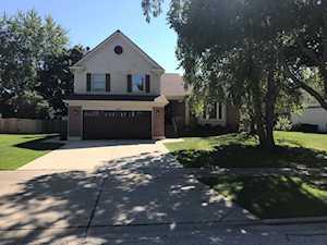 1542 Madison Dr Buffalo Grove, IL 60089