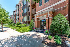 930 Curtiss St #410 Downers Grove, IL 60515