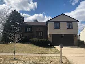 102 Lilac Ln Buffalo Grove, IL 60089