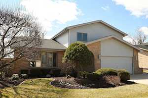 11745 Brook Hill Dr Orland Park, IL 60467