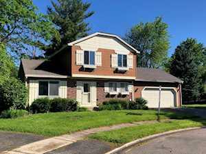 1329 Duquesne Ave Naperville, IL 60565