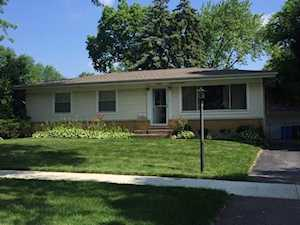 504 E Holly Ave Mount Prospect, IL 60056