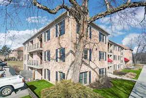1728 Fayette Walk #L Hoffman Estates, IL 60169