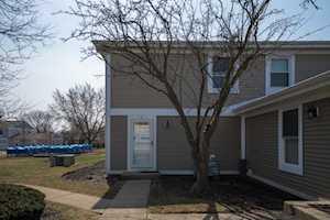 355 Farmingdale Circle #4 Vernon Hills, IL 60061