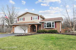 1036 Williamsburg Dr Naperville, IL 60540