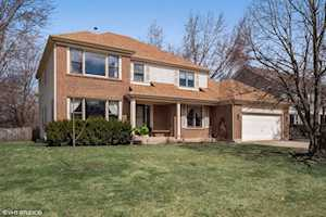 646 Raintree Ct Buffalo Grove, IL 60089
