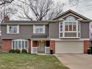 54 W Center Ave Lake Bluff, IL 60044