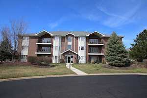 13097 Laurel Glen Ct #202 Palos Heights, IL 60463