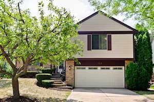 303 Abbey Ln Vernon Hills, IL 60061