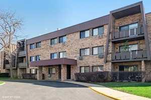 2604 N Windsor Dr #206 Arlington Heights, IL 60004