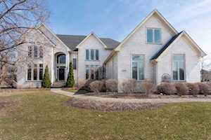 22883 N South Woodcrest Ln Kildeer, IL 60047