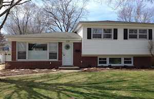 516 S Carol Ln Mount Prospect, IL 60056