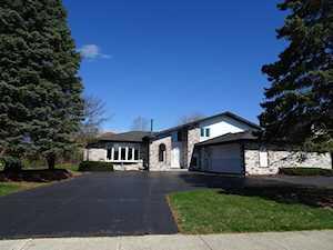 10126 Westport Dr Palos Park, IL 60464