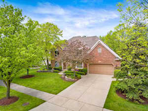 919 Rock Spring Rd Naperville, IL 60565
