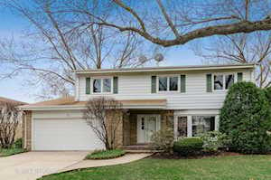 63 Mulberry Rd Deerfield, IL 60015
