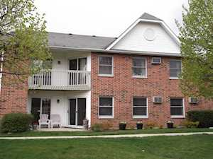 1311 Cunat Ct #1A Lake In The Hills, IL 60156