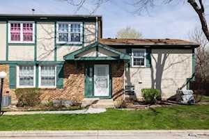 312 Plumwood Ct #312 Vernon Hills, IL 60061
