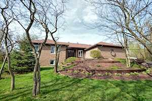15 Valley View Dr Lemont, IL 60439