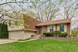 990 Knollwood Dr Buffalo Grove, IL 60089