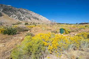 194 Sierra Wave Bishop, CA 93514-0000
