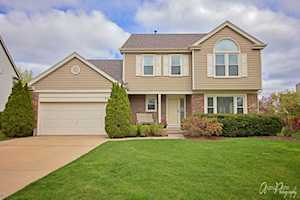 497 Satinwood Terrace Buffalo Grove, IL 60089