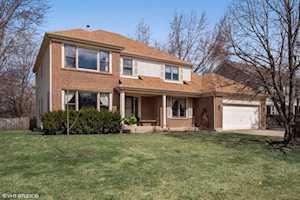 646 Raintree Ct Buffalo Grove, IL 60089
