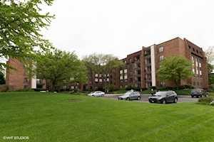 448 Raintree Ct #2N Glen Ellyn, IL 60137