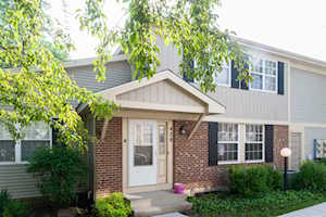 428 Muirwood Ct #428 Vernon Hills, IL 60061