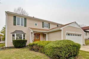 217 Amber Ln Vernon Hills, IL 60061