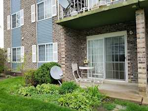 1521 N Windsor Dr #115 Arlington Heights, IL 60004