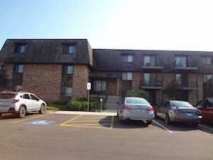 12 Oak Creek Dr #2220 Buffalo Grove, IL 60089