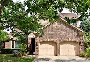 44 Chestnut Terrace Buffalo Grove, IL 60089