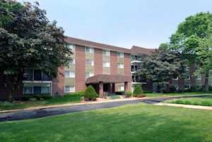 1030 S Fernandez Ave #4D Arlington Heights, IL 60005
