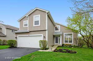 459 Harvest Gate Lake In The Hills, IL 60156