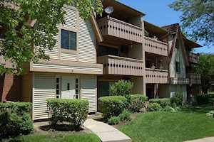 19 Parkside Ct #2 Vernon Hills, IL 60061