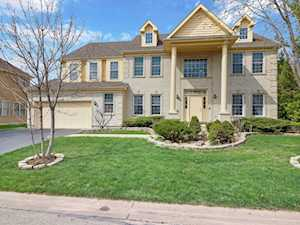 9 Shoal Creek Ct Lake In The Hills, IL 60156