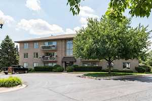 1056 N Ashley Ct #3D Lockport, IL 60441