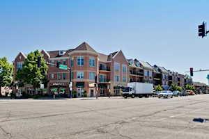 40 E Northwest Hwy #309 Mount Prospect, IL 60056
