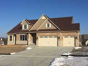 13911 W Wildwood Ln Homer Glen, IL 60491