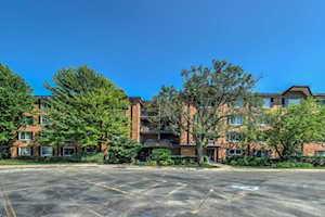 1107 S Old Wilke Rd #407 Arlington Heights, IL 60005